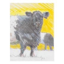 Galloway ceñido acobarda el dibujo postal
