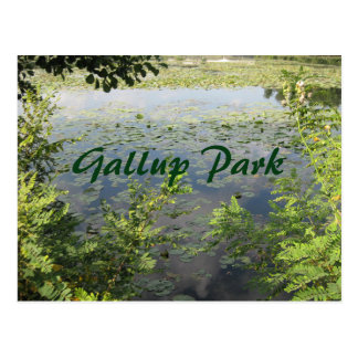 Gallup Park In Ann Arbor Postcard