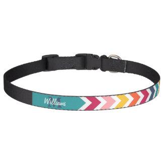 Galón de encargo colorido de moda fresco del collares para perros