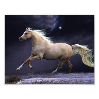galope del caballo cojinete