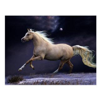 galope del caballo tarjeta postal