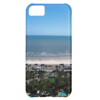 Galveston Bay iPhone 5C Case
