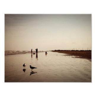 Galveston Beachlife Cojinete