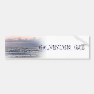 Galveston gal bumper sticker