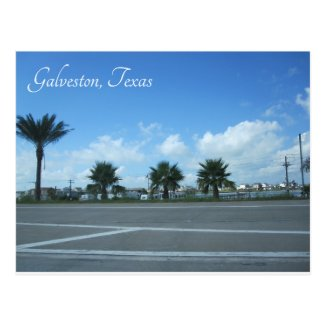 Galveston, Texas Postcard