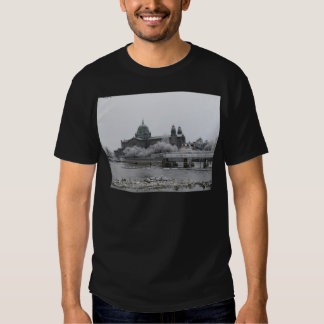 Galway Cathedral in frost T Shirt