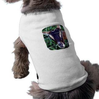 Gama alpina de Oberhasli a través de la cerca Camiseta De Perrito
