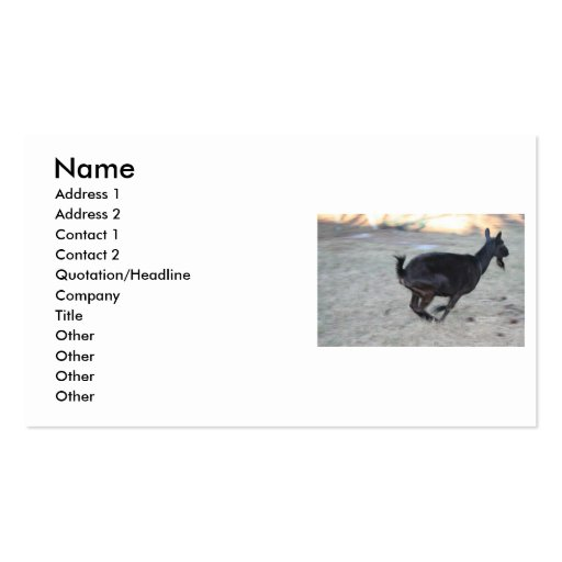 Gama alpina negra de la cabra que corre lejos a la plantillas de tarjetas personales