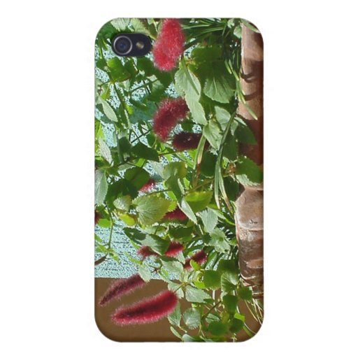 Gama de productos del detalle de Noosa iPhone 4 Carcasas