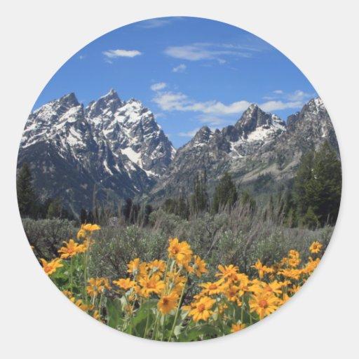 Gama de Teton magnífica nevada con las flores Pegatina Redonda