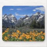 Gama de Teton magnífica nevada con las flores Alfombrilla De Ratón