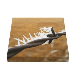 Gama del alambre de púas impresión en lienzo estirada