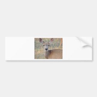 Gama del ciervo mula pegatina de parachoque