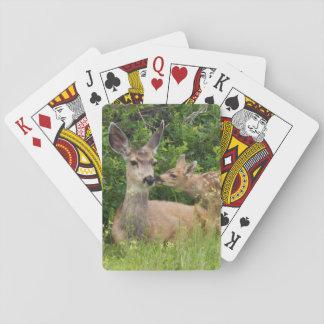 Gama del ciervo mula con el cervatillo 2 barajas de cartas