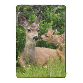 Gama del ciervo mula con el cervatillo 2 funda de iPad mini