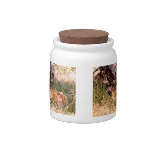 Gama del ciervo mula jarras para caramelos