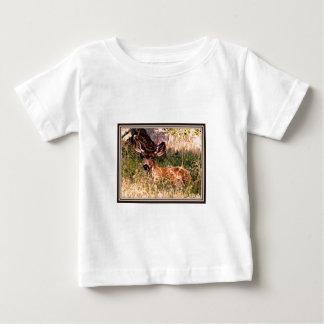 Gama del ciervo mula playeras