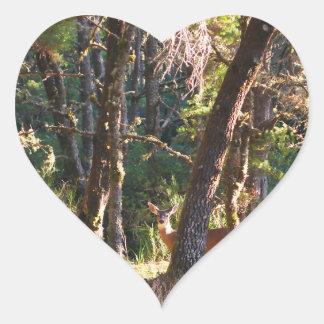 Gama en bosque del parque de estado de la bahía de pegatina en forma de corazón