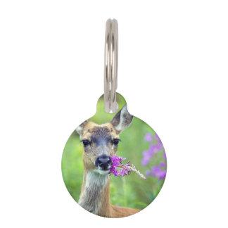Gama un ciervo placa para mascotas