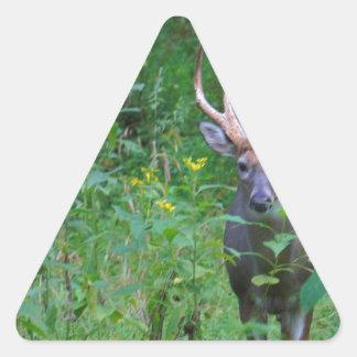 Gama un ciervo pegatina triangular