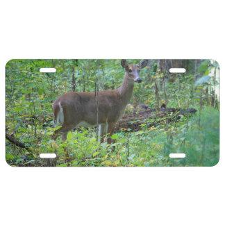 Gama un ciervo placa de matrícula