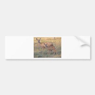 Gama y cervatillo del ciervo mula etiqueta de parachoque