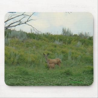 Gama y cervatillo del ciervo mula D0005 Alfombrillas De Ratón
