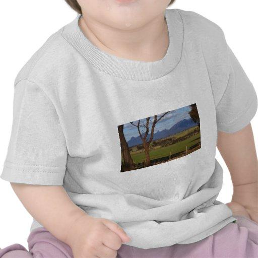 Gamas de Stirling Camiseta