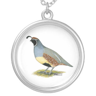 Gambel's Desert Quail Silver Plated Necklace