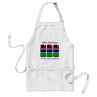 Gambia Flag Spice Jars Apron