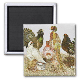 Game Birds 2 Inch Square Magnet