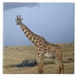 Game drive safari watching Masai Giraffe Ceramic Tiles