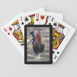 Game Rooster photo Poker Cards