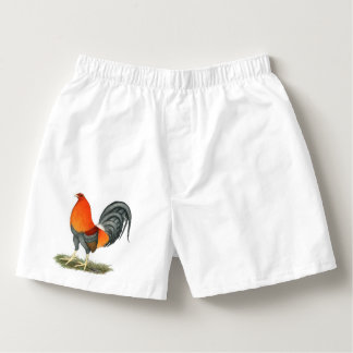 Gamecock Blue Red Rooster Boxers