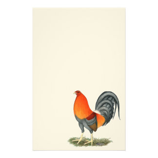 Gamecock Blue Red Rooster Stationery