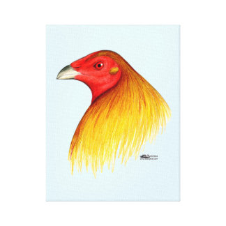 Gamecock Dubbed Canvas Print