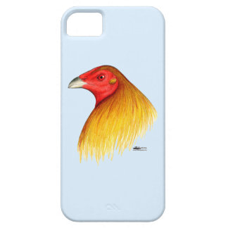 Gamecock Dubbed iPhone SE/5/5s Case