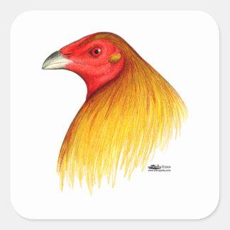 Gamecock Dubbed Square Sticker