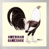 Gamecock Sepia Poster