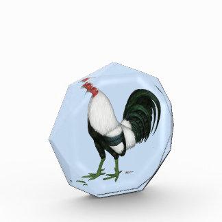 Gamecock Silver Duckwing Award
