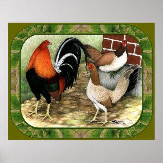 Gamefowl en la granja póster