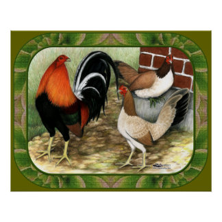 Gamefowl On the Farm Poster