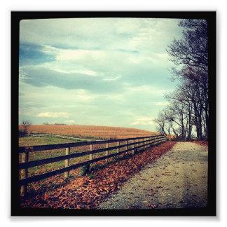 Gameland Fence Fall Art Photo