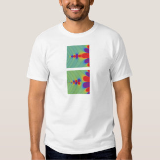 Gamma function shirt