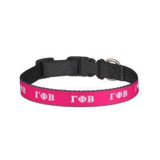 Gamma Phi Beta White and Pink Letters Pet Collar