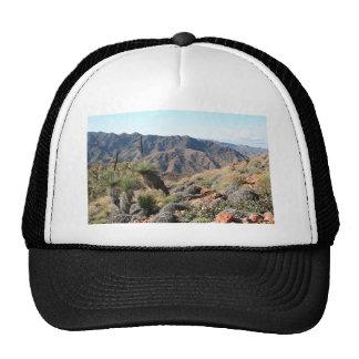 Gammon Ranges, Outback South Australia 2 Trucker Hat