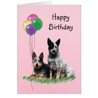 Ganado australiano perro, globos del cumpleaños tarjeta de felicitación