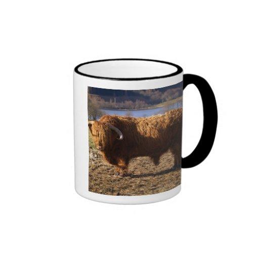 Ganado Bull, Escocia de la montaña Tazas De Café