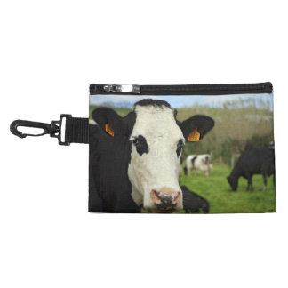 Ganado de Holstein