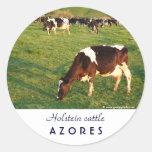 Ganado de Holstein Pegatina Redonda